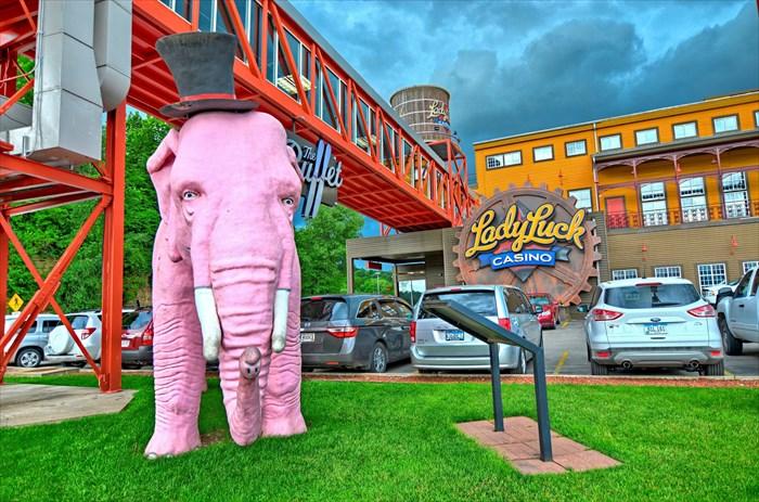 Pinky the Elephant